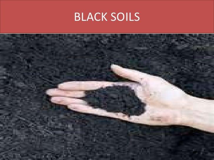 Black cotton soil essay for Properties of soil wikipedia