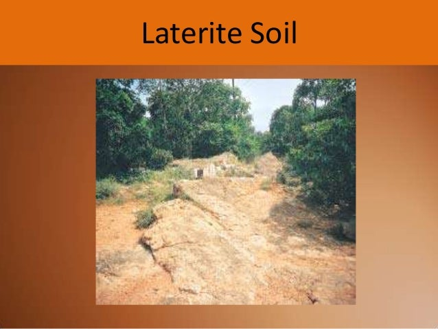 Pics for laterite soil for Soil in india