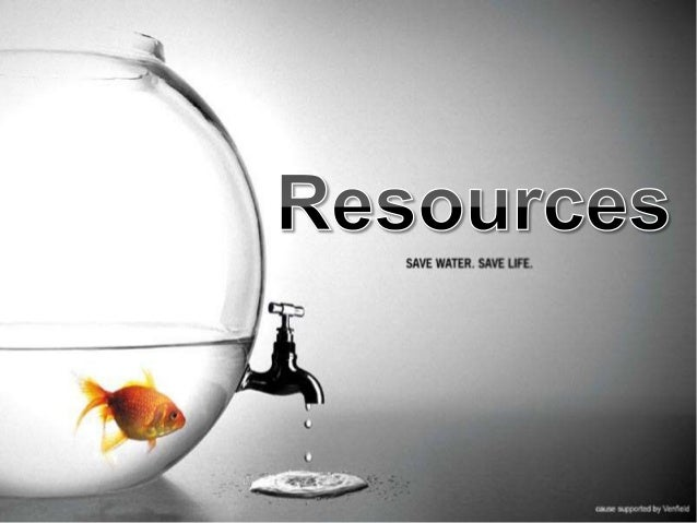 Essay about mineral resources