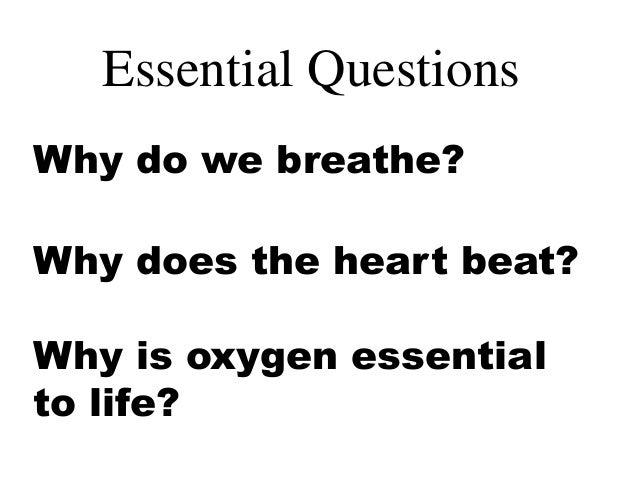 32 Symbol For Oxygen We Breathe For Breathe Symbol Oxygen We