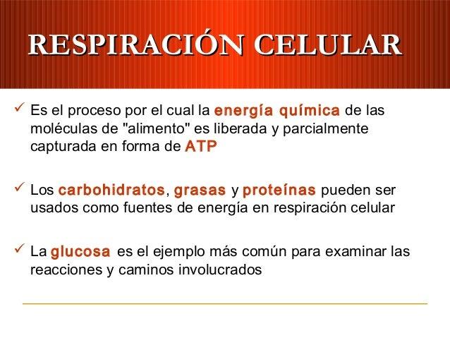 """RESPIRACIÓN CELULARRESPIRACIÓN CELULAR Es el proceso por el cual la energía química de lasmoléculas de """"alimento"""" es libe..."""