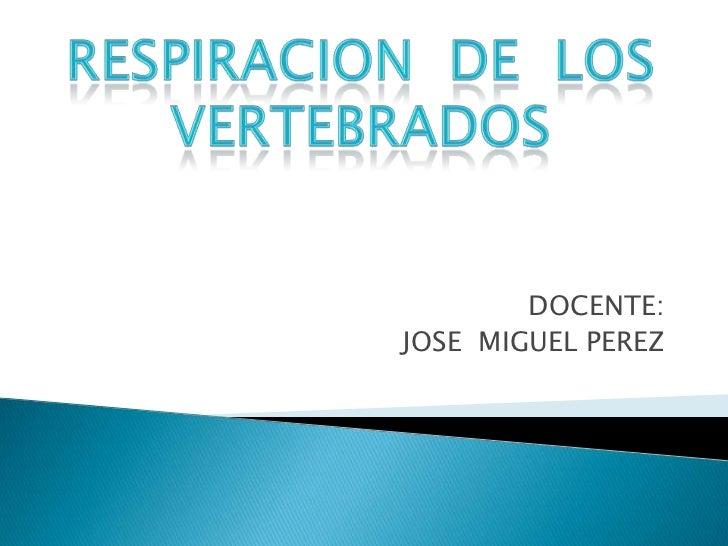 RESPIRACIÓN DE LOS VERTEBRADOS