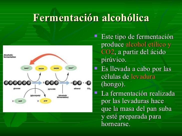 La codificación para 2 años el alcoholismo