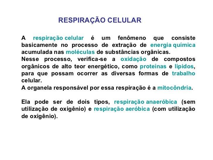 RESPIRAÇÃO CELULAR A  respiração celular  é um fenômeno que consiste basicamente no processo de extração de  energia quími...