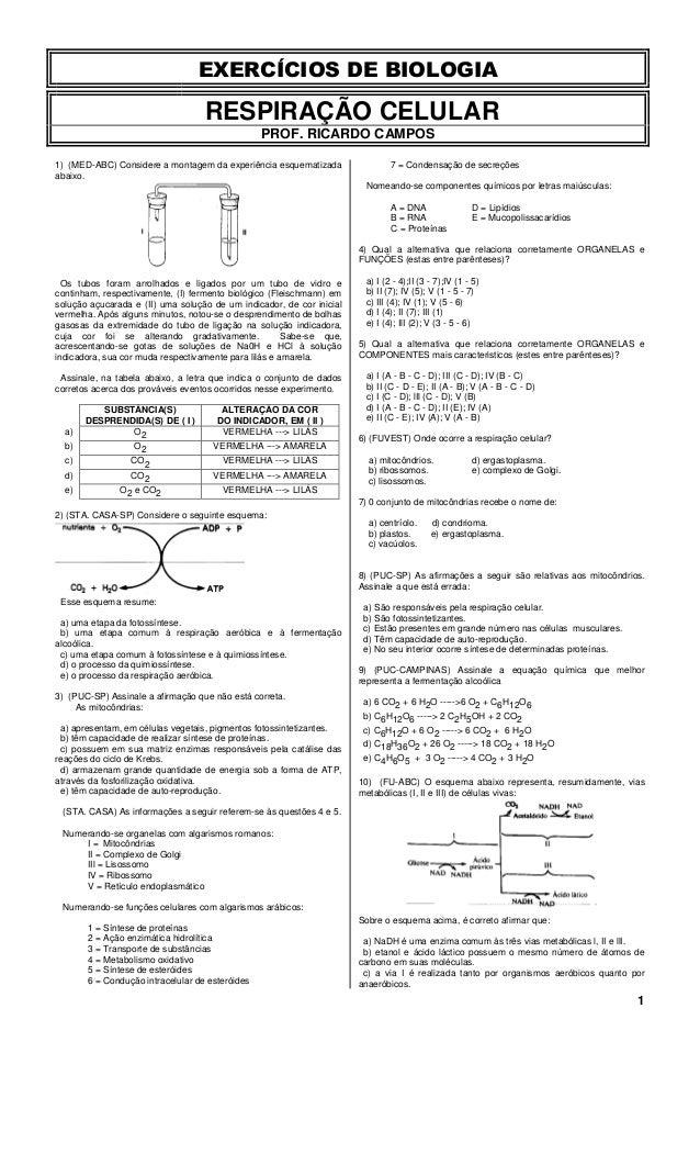 EXERCÍCIOS DE BIOLOGIA  RESPIRAÇÃO CELULAR PROF. RICARDO CAMPOS 1) (MED-ABC) Considere a montagem da experiência esquemati...