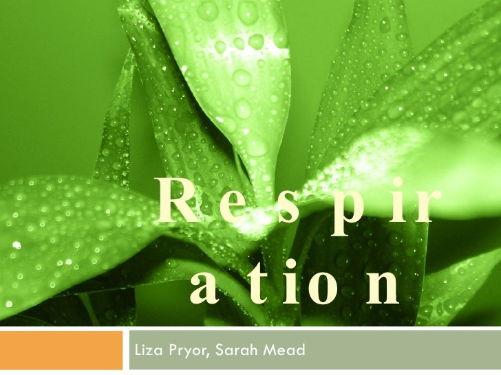 Respiration Liza Pryor, Sarah Mead
