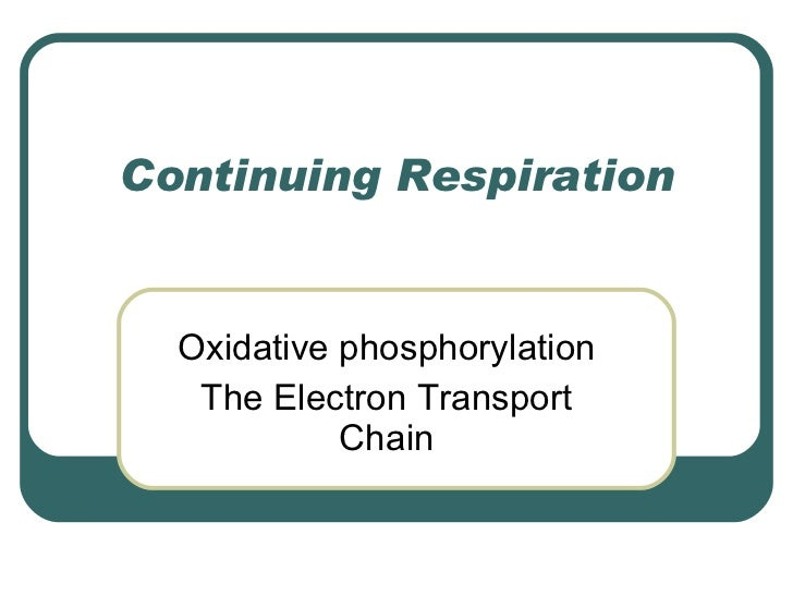Continuing Respiration Oxidative phosphorylation The Electron Transport Chain