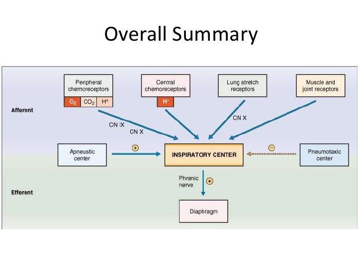 Overall Summary<br />