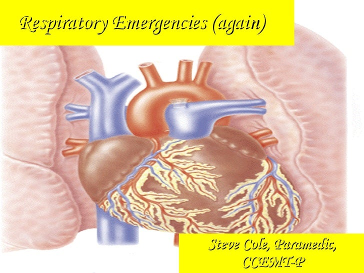 Steve Cole, Paramedic, CCEMT-P Respiratory Emergencies (again)