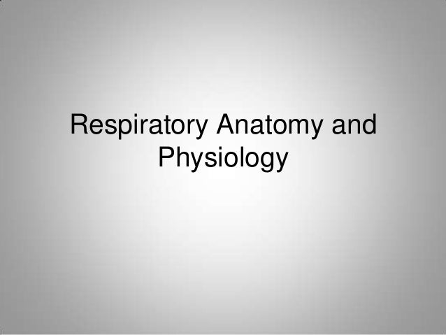 Respiratory anatomy and physiology faculty version