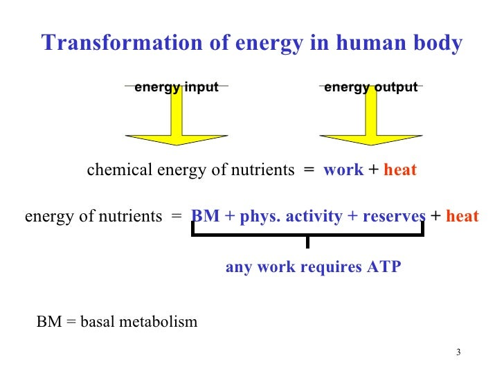 role of energy in the body In our bodies we need energy so that we could do things that are possible such as move our muscles, talk and all the other things that we do without.