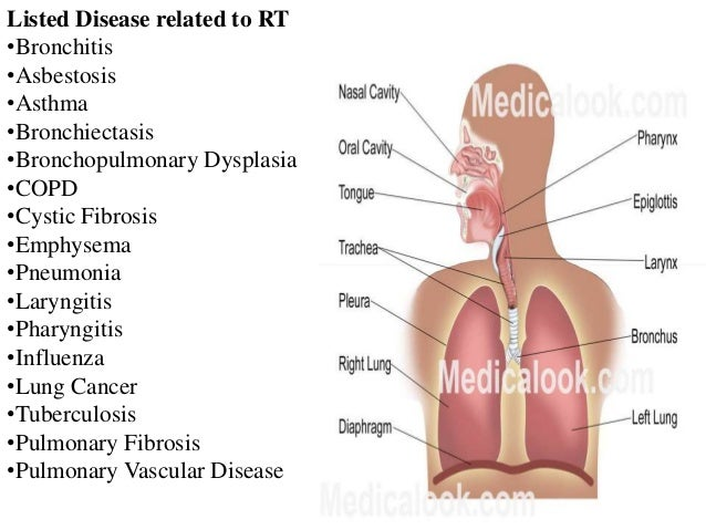 understanding the disorder of the respiratory system asthma List of respiratory system diseases and their signs, symptoms and this list of respiratory diseases will help you understand what could be causing your symptoms consult your doctor to find out more asthma a chronic lung disease that causes inflammation and narrowing in the.