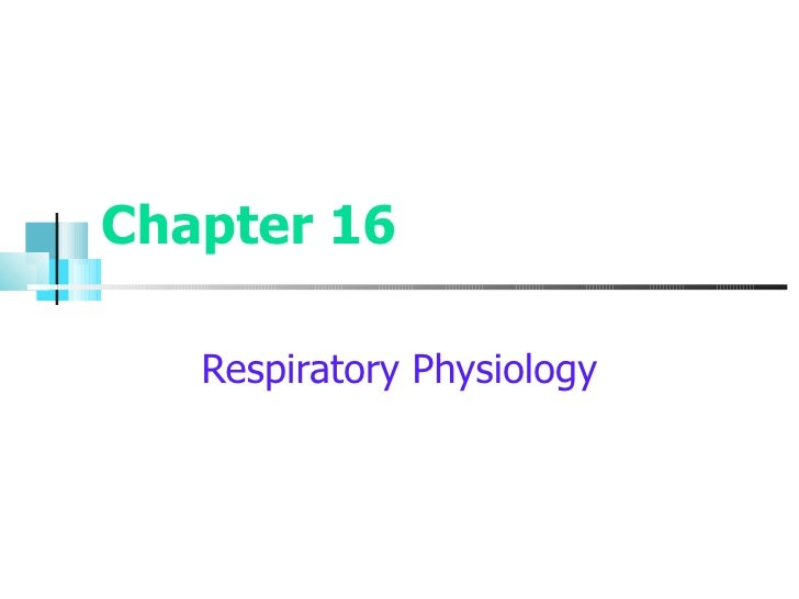 Chapter 16 Respiratory Physiology