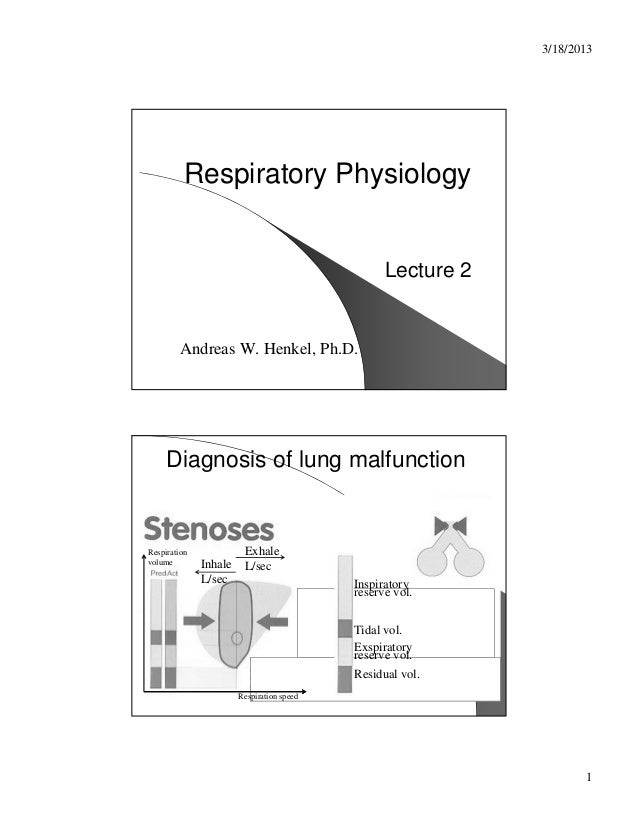 3/18/2013          Respiratory Physiology                                                 Lecture 2        Andreas W. Henk...