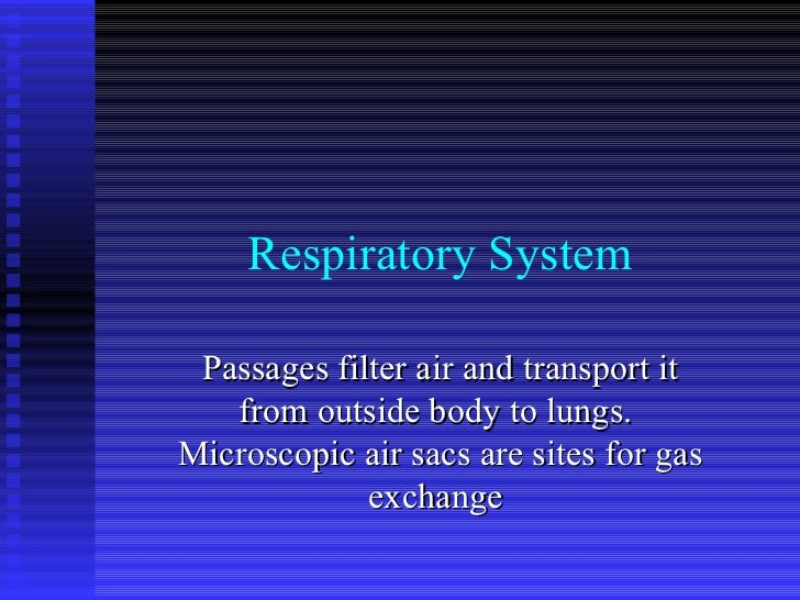 Respiratory System Passages filter air and transport it from outside body to lungs.  Microscopic air sacs are sites for ga...