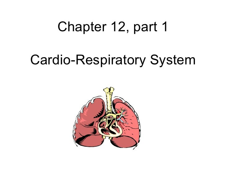 Chapter 12, part 1Cardio-Respiratory System