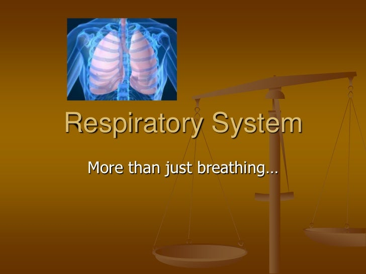 Respiratory System More than just breathing…