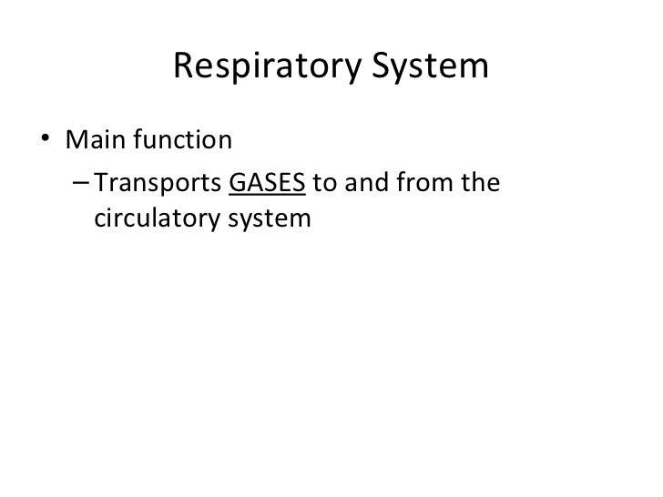 Respiratory System <ul><li>Main function </li></ul><ul><ul><li>Transports  GASES  to and from the circulatory system </li>...