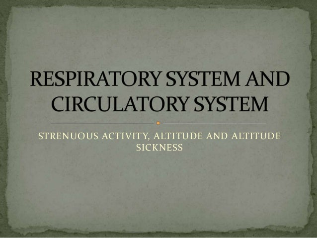 Respiratory system and circulatory system in high altitude