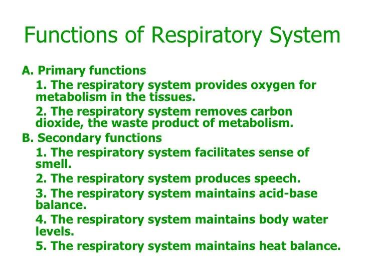 Functions of Respiratory System <ul><li>A. Primary functions </li></ul><ul><li>1. The respiratory system provides oxygen f...
