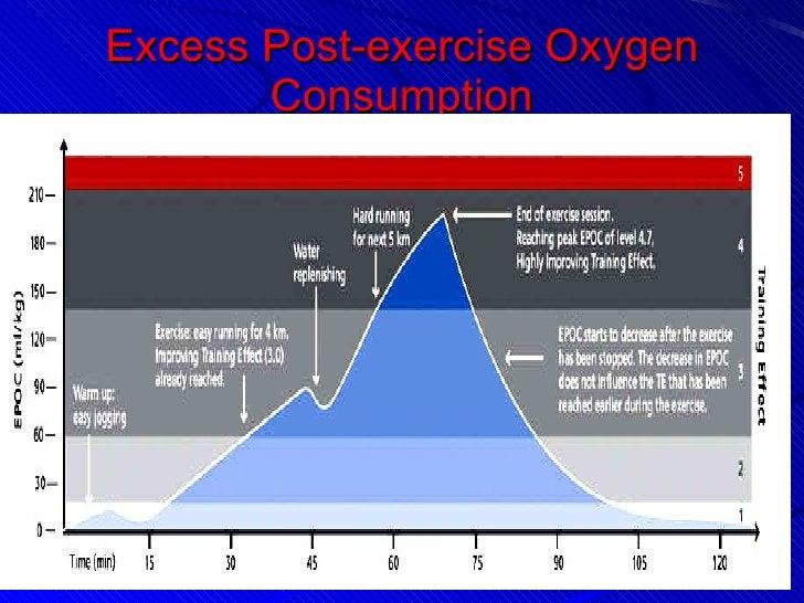 excess post exercise oxygen consumption pdf