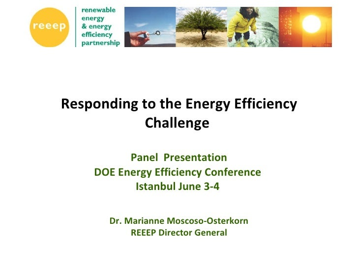 Responding to the Energy Efficiency Challenge  Panel  Presentation DOE Energy Efficiency Conference  Istanbul June 3-4  Dr...