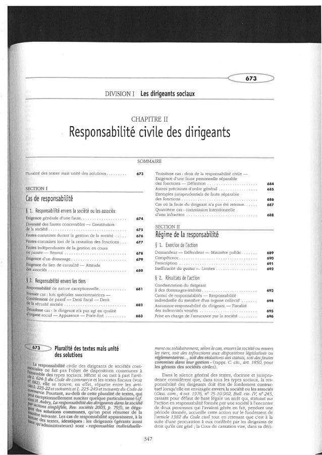 Responsabilidade civil dos dirigentes