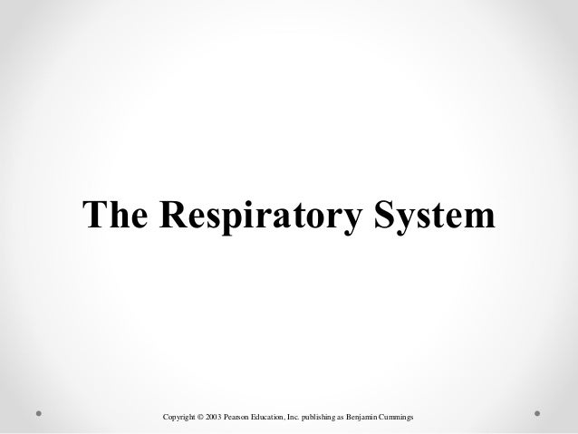 Copyright © 2003 Pearson Education, Inc. publishing as Benjamin Cummings The Respiratory System