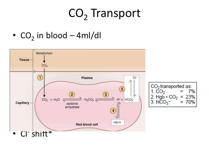 CO2 Transport<br />CO2 in blood – 4ml/dl<br />Cl- shift*<br />