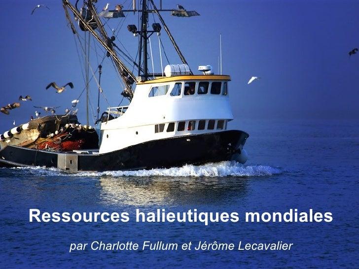 Ressources halieutiques mondiales par Charlotte Fullum et Jérôme Lecavalier