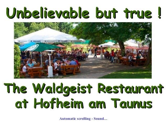 Unbelievable but true !Unbelievable but true ! The Waldgeist RestaurantThe Waldgeist Restaurant at Hofheim am Taunusat Hof...