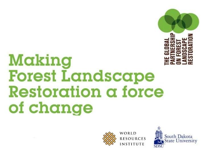 Making Forest Landscape Restoration a force of change