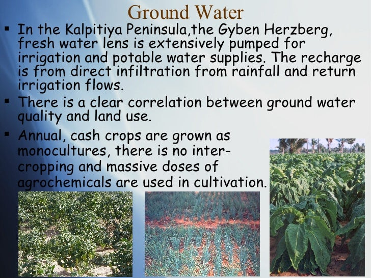 Ground Water <ul><li>In the Kalpitiya Peninsula,the Gyben Herzberg, fresh water lens is extensively pumped for irrigation ...