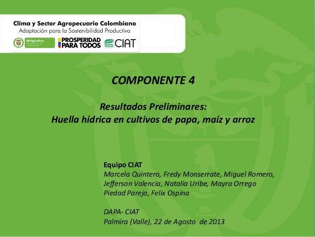 COMPONENTE 4 Resultados Preliminares: Huella hídrica en cultivos de papa, maíz y arroz  Equipo CIAT Marcela Quintero, Fred...