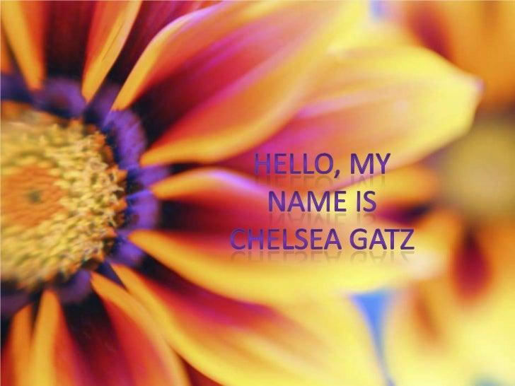 Hello, My name is Chelsea Gatz<br />