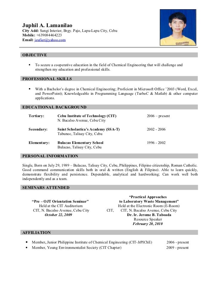 Resume Format For L Visa