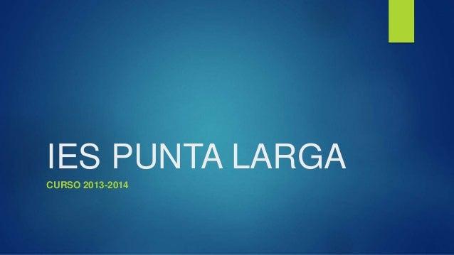 IES PUNTA LARGA CURSO 2013-2014