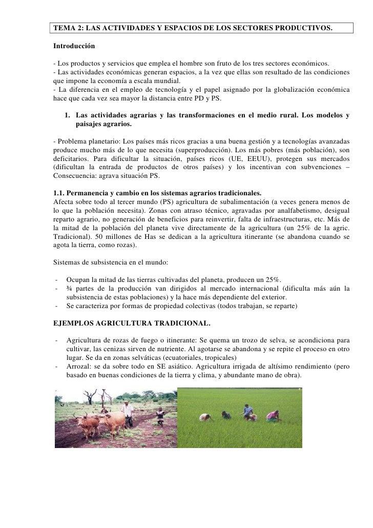 TEMA 2: LAS ACTIVIDADES Y ESPACIOS DE LOS SECTORES PRODUCTIVOS.  Introducción  - Los productos y servicios que emplea el h...