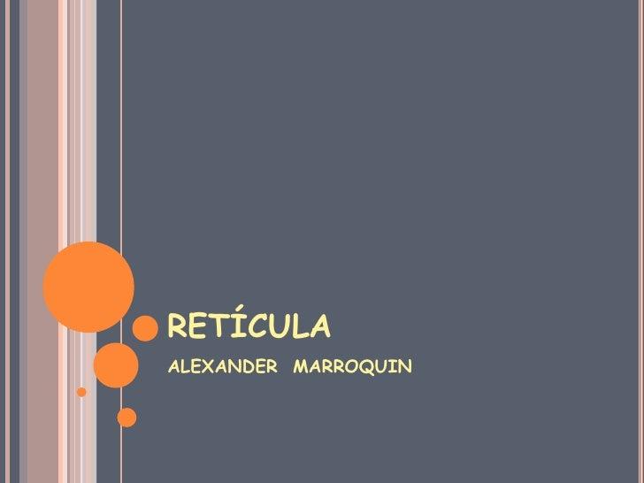 RETÍCULA<br />ALEXANDER  MARROQUIN<br />
