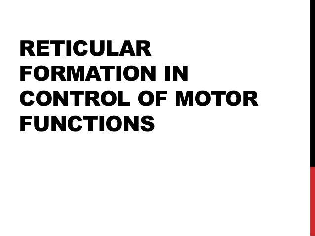 RETICULAR FORMATION IN CONTROL OF MOTOR FUNCTIONS