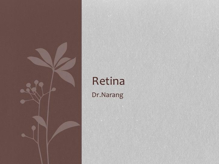 Retina class 7th semester