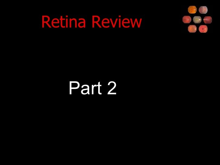 Retina Review <ul><li>Part 2 </li></ul>