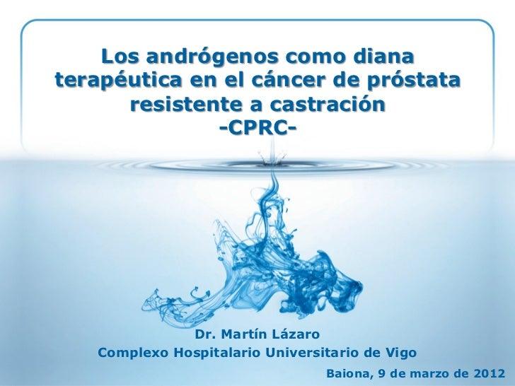 Los andrógenos como diana terapéutica en CPRC