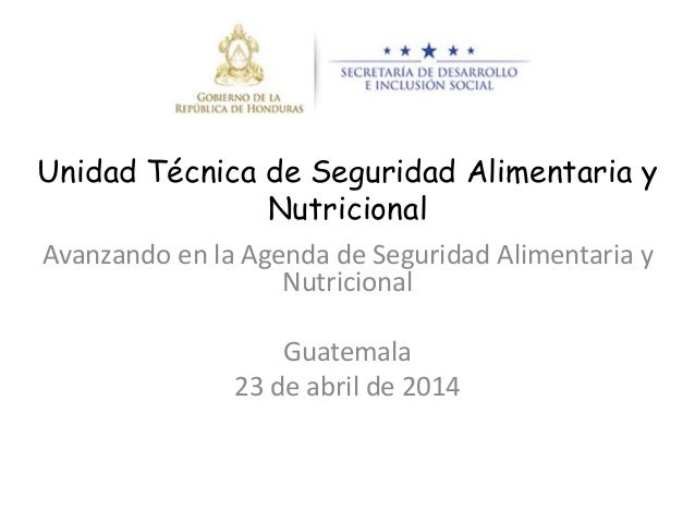 Unidad Técnica de Seguridad Alimentaria y Nutricional Avanzando en la Agenda de Seguridad Alimentaria y Nutricional Guatem...