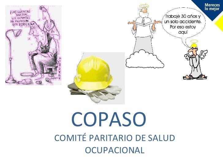 Generalidades del CoPaSO