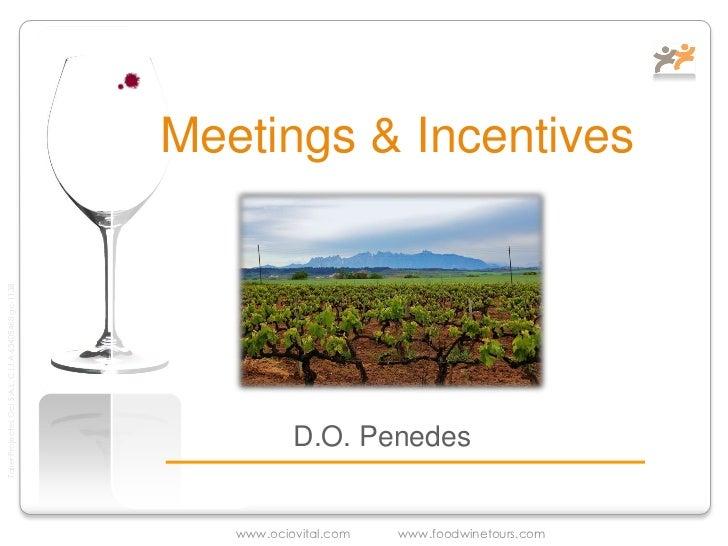 Reuniones de Ocio o Negocio en bodega D.O Penedes
