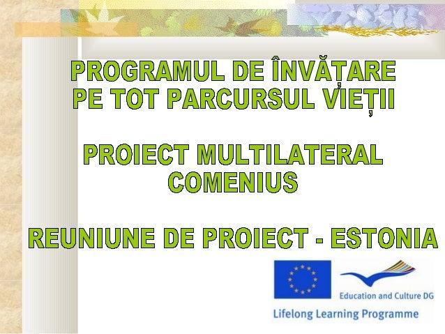 Reuniunea de proiect din estonia