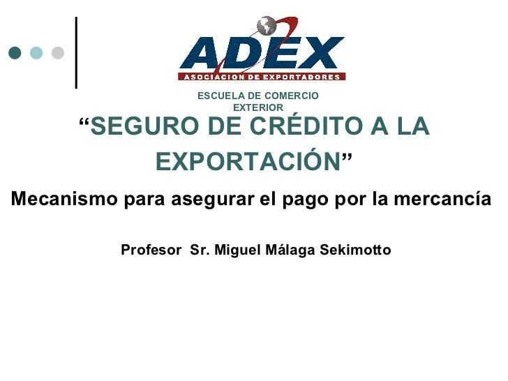 """"""" SEGURO DE CRÉDITO A LA EXPORTACIÓN """" Mecanismo para asegurar el pago por la mercancía   Profesor  Sr. Miguel Málaga Seki..."""