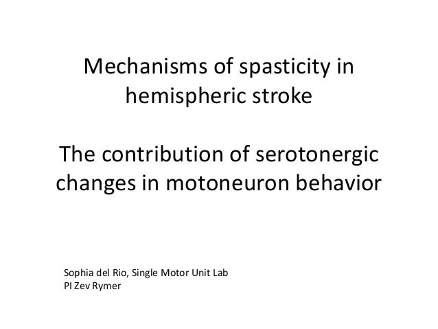 Mechanisms of spasticity in hemispheric stroke The contribution of serotonergic changes in motoneuron behavior Sophia del ...