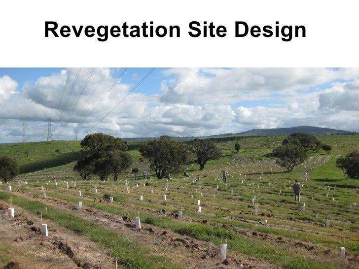 Revegetation Site Design